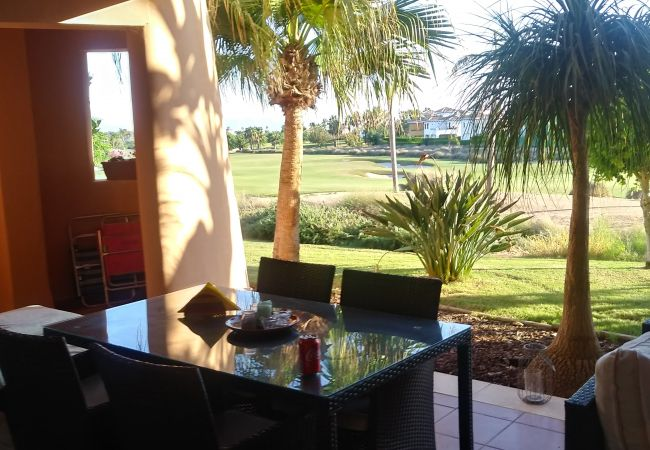 Apartment in Torre Pacheco - Casa Germeau - A Murcia Holiday Rentals Property